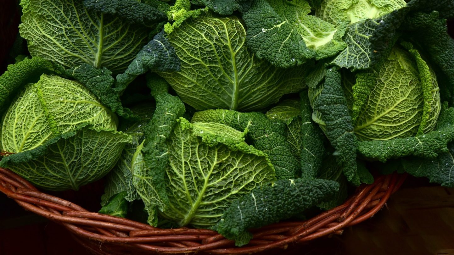 Butterkohl – ein interessantes Gemüse