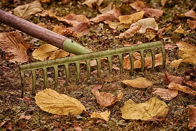 Der Garten im Herbst Tipps und Tricks